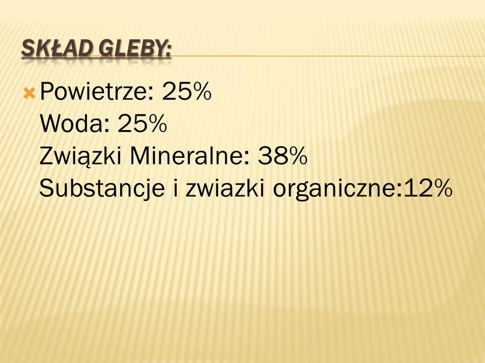 Skład Gleby: Powietrze: 25% Woda: 25% Związki Mineralne: 38% Substancje i zwiazki organiczne:12%