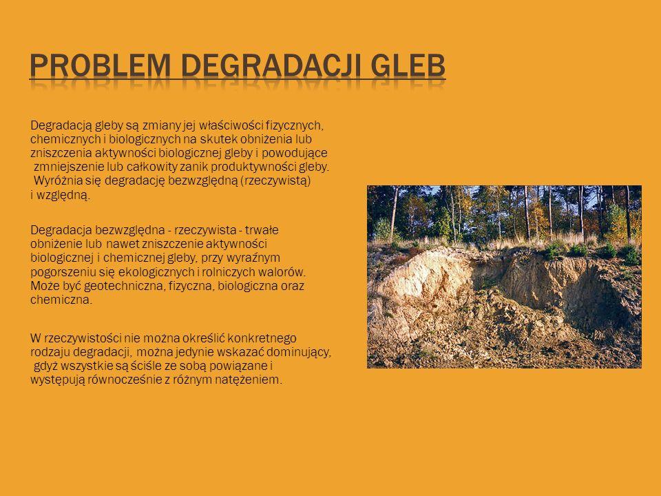 Problem degradacji gleb