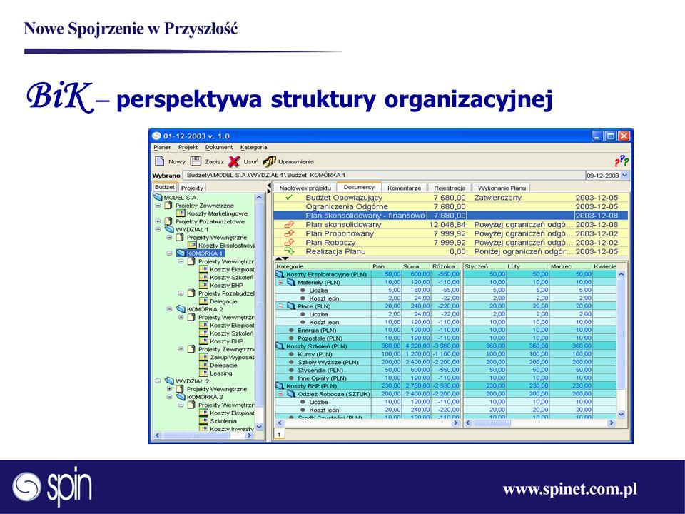 BiK – perspektywa struktury organizacyjnej
