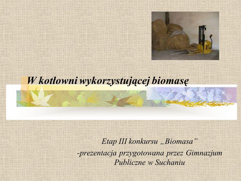 W kotłowni wykorzystującej biomasę