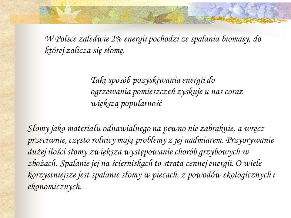 W Polsce zaledwie 2% energii pochodzi ze spalania biomasy, do której zalicza się słomę.