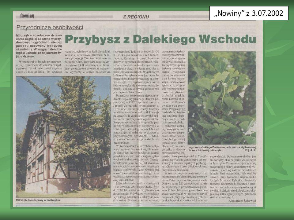 """""""Nowiny z 3.07.2002"""