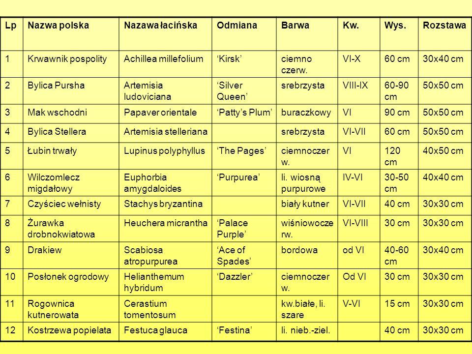 Lp Nazwa polska. Nazawa łacińska. Odmiana. Barwa. Kw. Wys. Rozstawa. 1. Krwawnik pospolity.