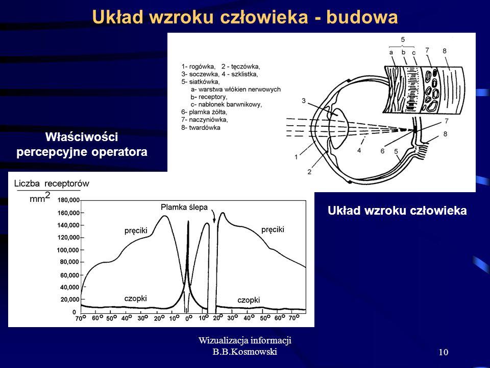 Układ wzroku człowieka - budowa