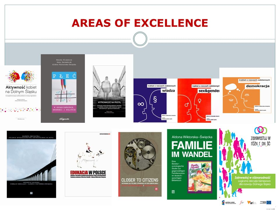AREAS OF EXCELLENCE
