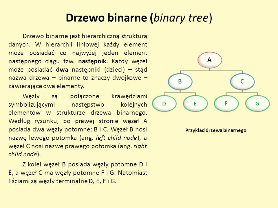 Drzewo binarne (binary tree)