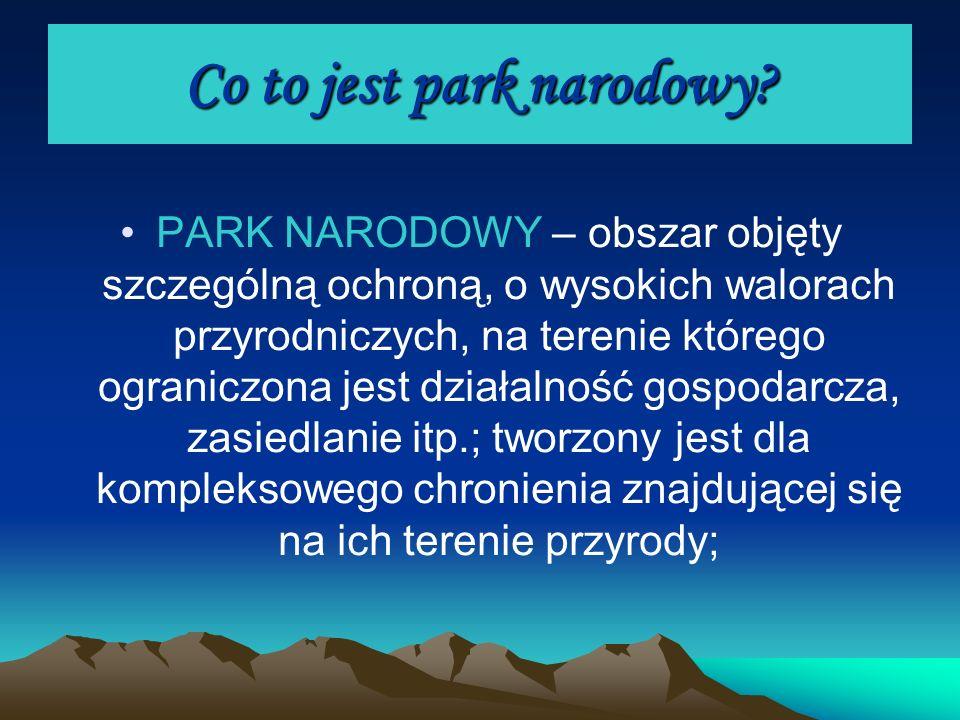 Co to jest park narodowy