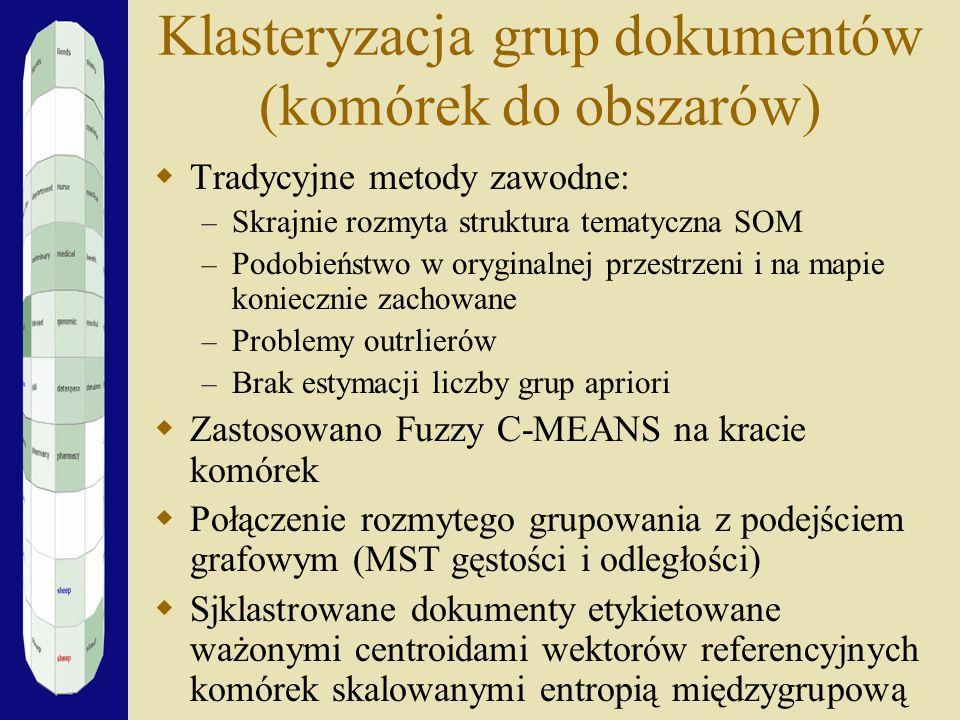 Klasteryzacja grup dokumentów (komórek do obszarów)