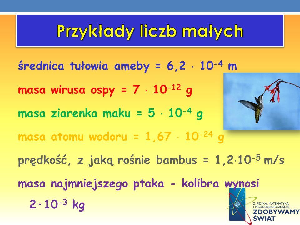 Przykłady liczb małych