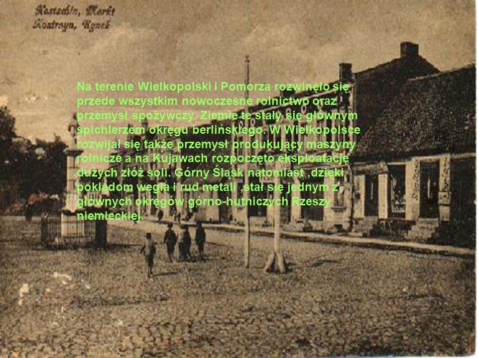 Na terenie Wielkopolski i Pomorza rozwinęło się przede wszystkim nowoczesne rolnictwo oraz przemysł spożywczy.