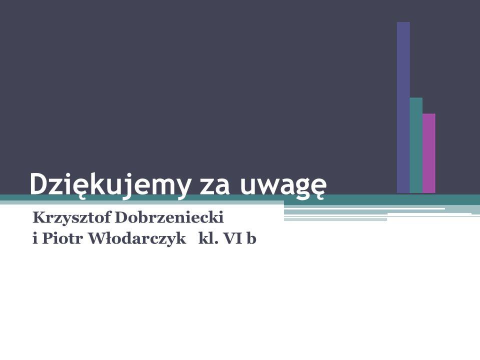 Krzysztof Dobrzeniecki i Piotr Włodarczyk kl. VI b