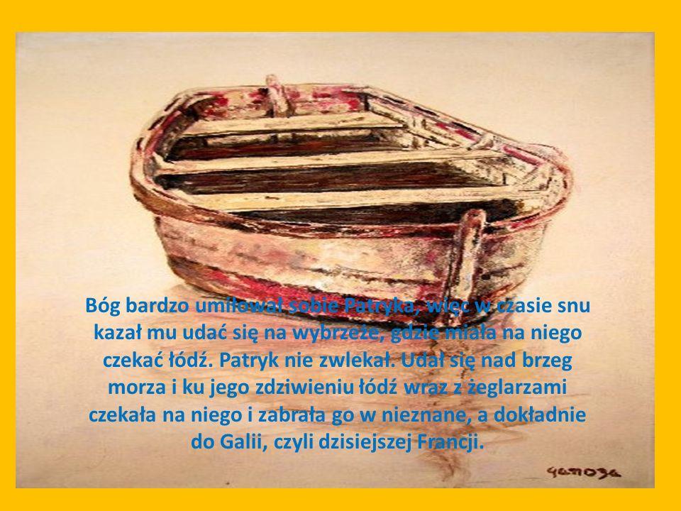 Bóg bardzo umiłował sobie Patryka, więc w czasie snu kazał mu udać się na wybrzeże, gdzie miała na niego czekać łódź.