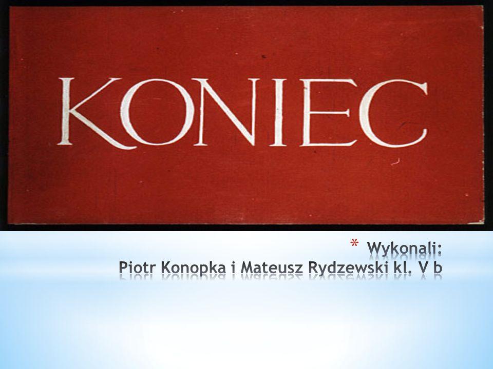 Wykonali: Piotr Konopka i Mateusz Rydzewski kl. V b