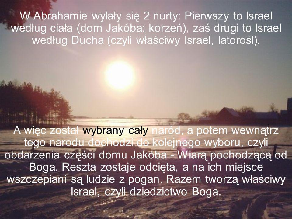 W Abrahamie wylały się 2 nurty: Pierwszy to Israel według ciała (dom Jakóba; korzeń), zaś drugi to Israel według Ducha (czyli właściwy Israel, latorośl).