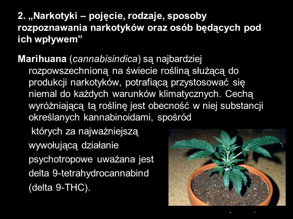 """2. """"Narkotyki – pojęcie, rodzaje, sposoby rozpoznawania narkotyków oraz osób będących pod ich wpływem"""