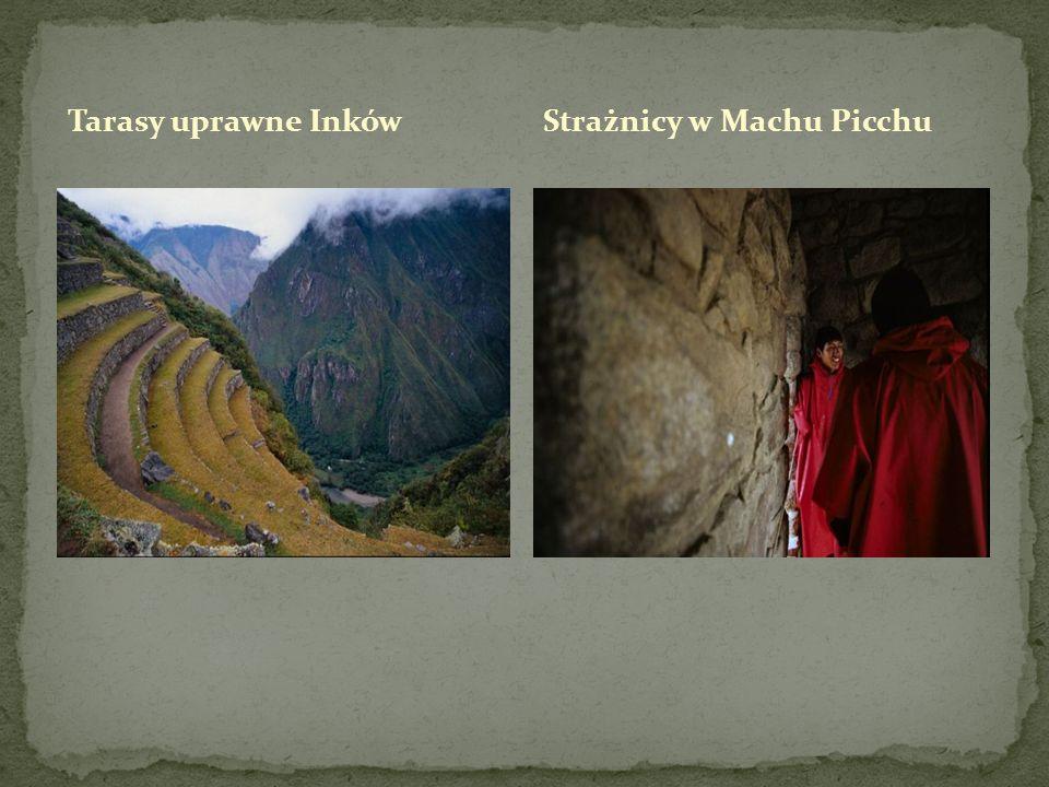 Tarasy uprawne Inków Strażnicy w Machu Picchu