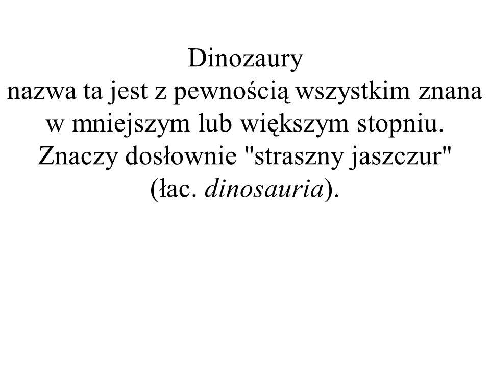 Dinozaury nazwa ta jest z pewnością wszystkim znana w mniejszym lub większym stopniu. Znaczy dosłownie straszny jaszczur