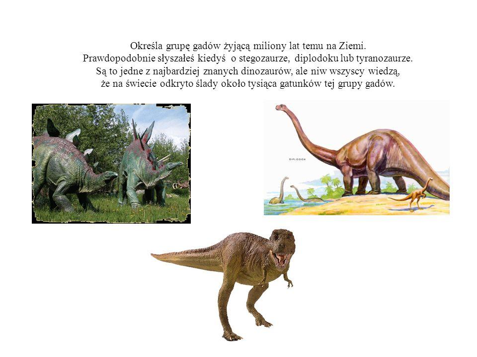 Określa grupę gadów żyjącą miliony lat temu na Ziemi.