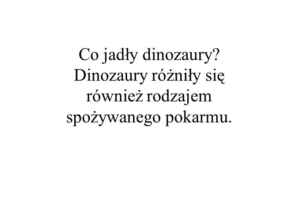 Dinozaury różniły się również rodzajem spożywanego pokarmu.
