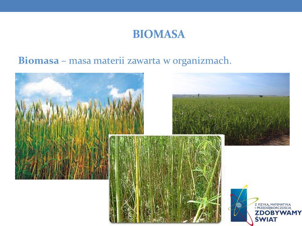 Biomasa Biomasa – masa materii zawarta w organizmach.