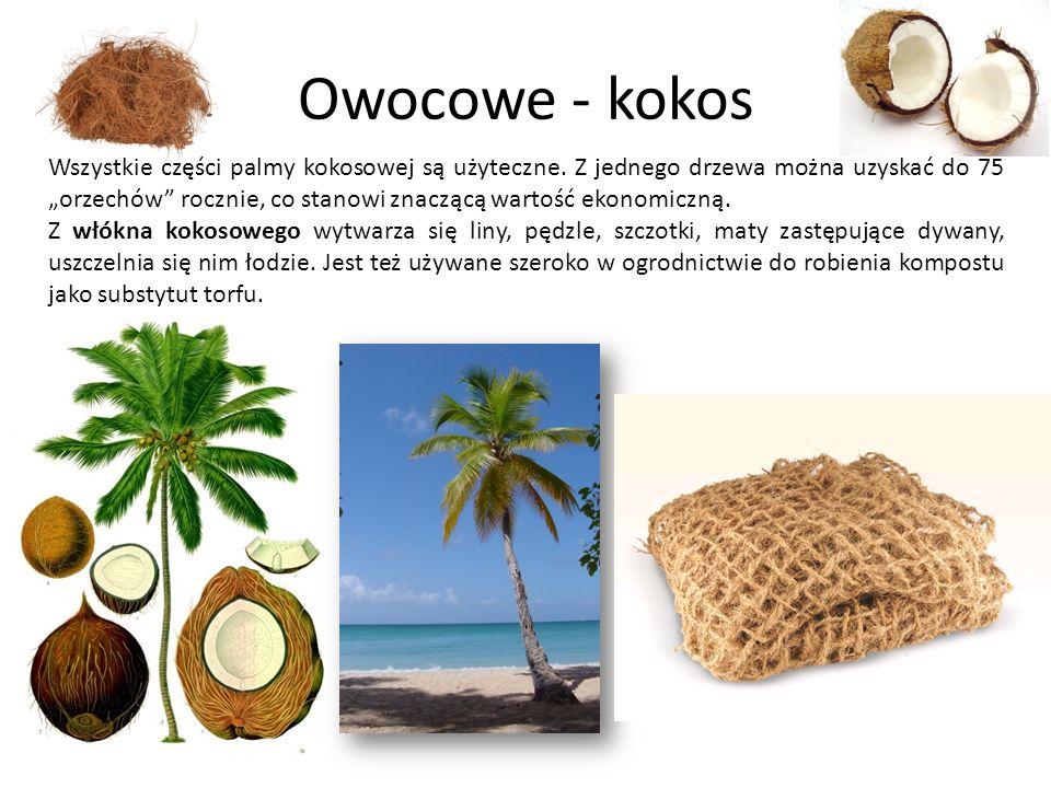 Owocowe - kokos