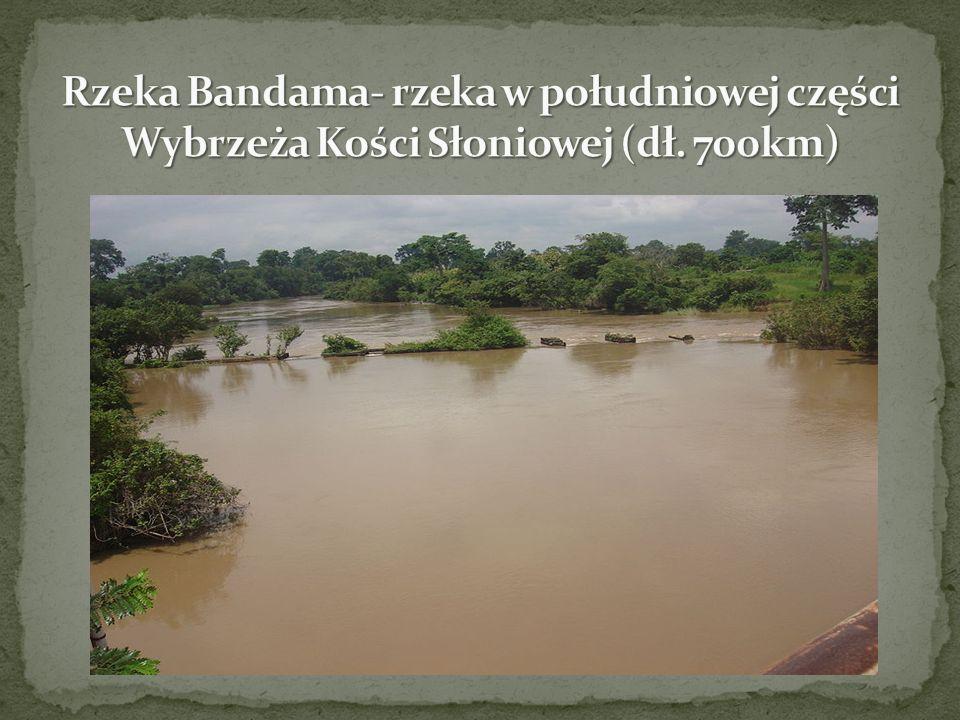 Rzeka Bandama- rzeka w południowej części Wybrzeża Kości Słoniowej (dł