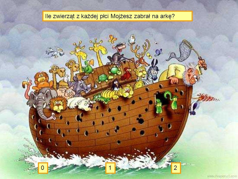 Ile zwierząt z każdej płci Mojżesz zabrał na arkę