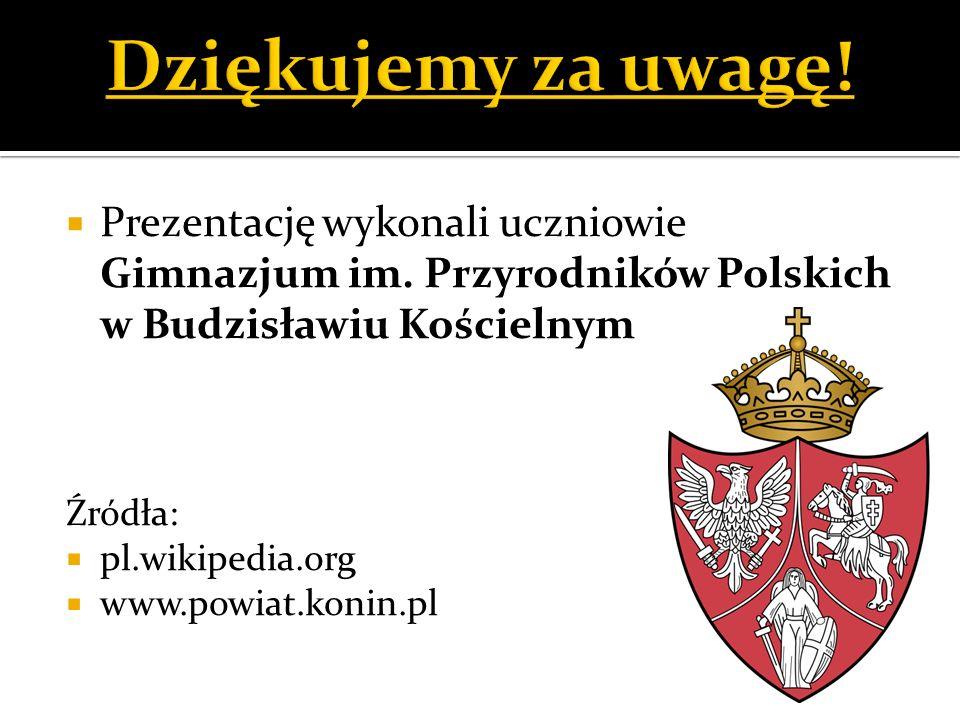 Dziękujemy za uwagę! Prezentację wykonali uczniowie Gimnazjum im. Przyrodników Polskich w Budzisławiu Kościelnym.