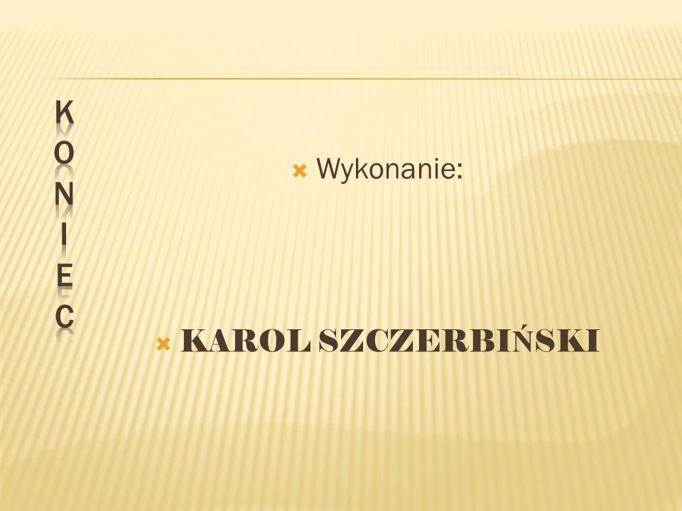 K O N I E C Wykonanie: KAROL SZCZERBIŃSKI