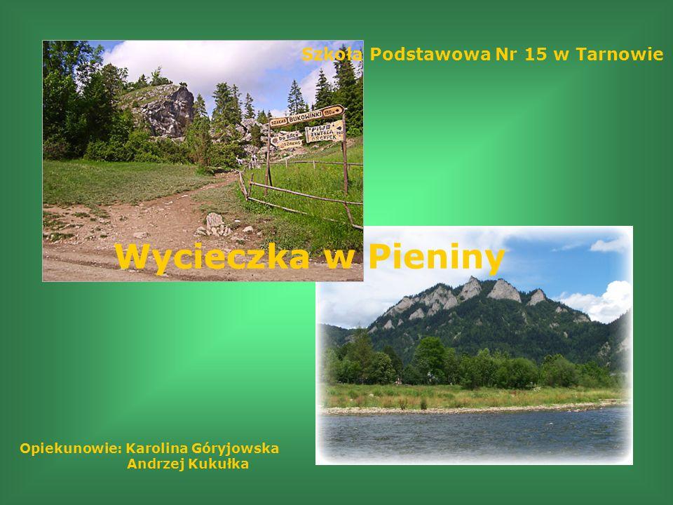 Szkoła Podstawowa Nr 15 w Tarnowie