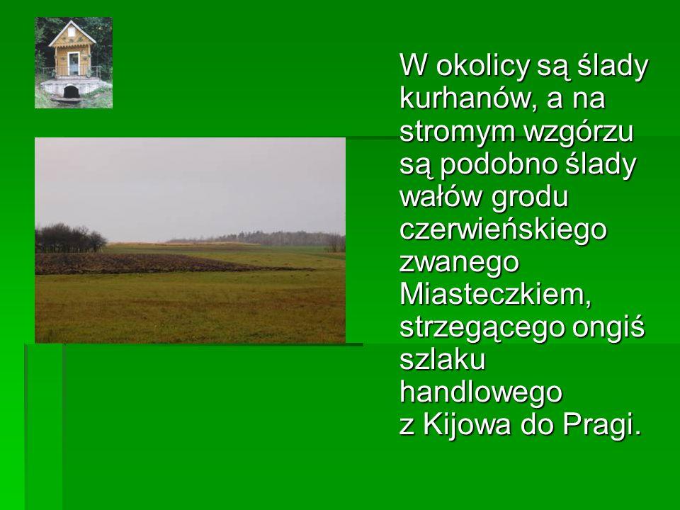 W okolicy są ślady kurhanów, a na stromym wzgórzu są podobno ślady wałów grodu czerwieńskiego zwanego Miasteczkiem, strzegącego ongiś szlaku handlowego z Kijowa do Pragi.