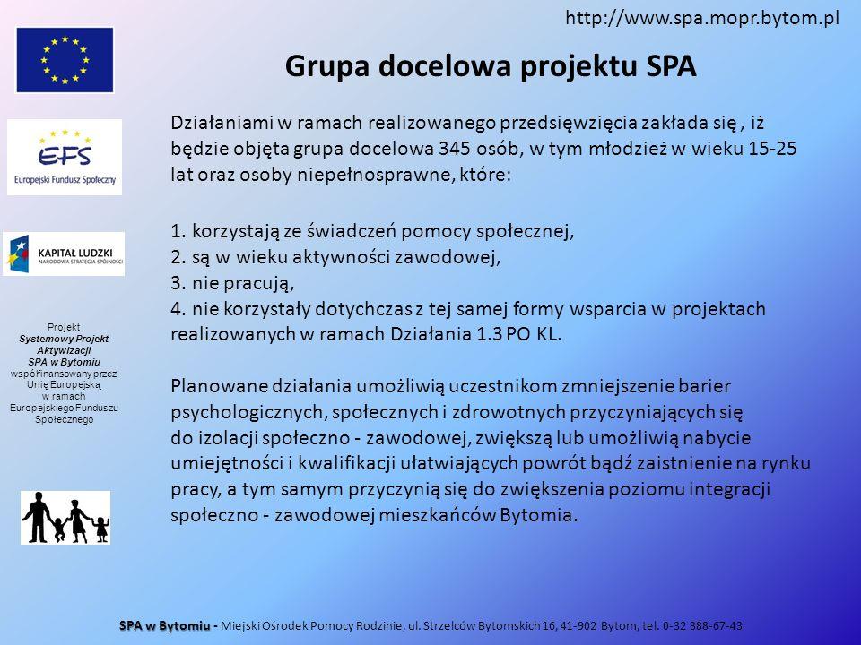 Grupa docelowa projektu SPA