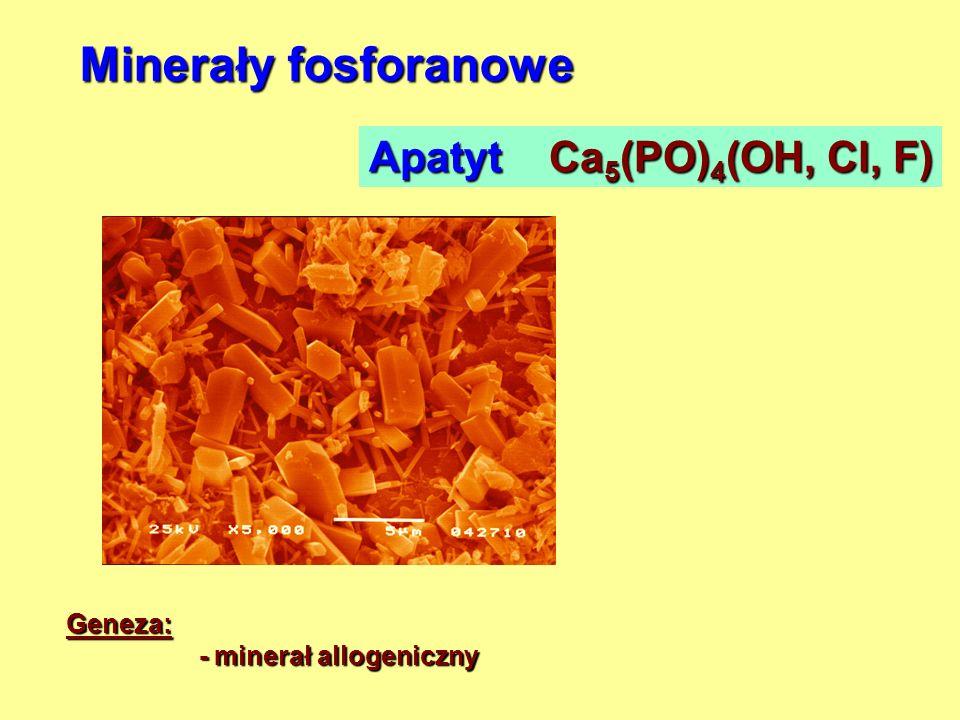 Minerały fosforanowe Apatyt Ca5(PO)4(OH, Cl, F) Geneza: