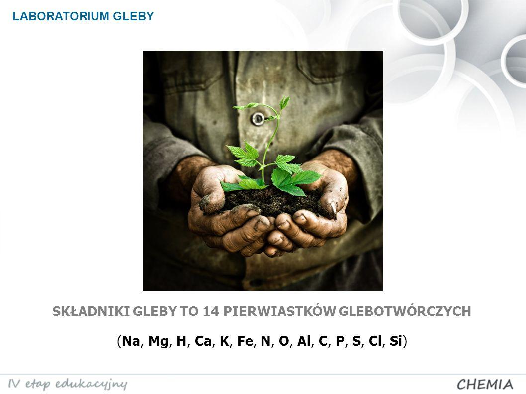 LABORATORIUM GLEBY SKŁADNIKI GLEBY TO 14 PIERWIASTKÓW GLEBOTWÓRCZYCH (Na, Mg, H, Ca, K, Fe, N, O, Al, C, P, S, Cl, Si)