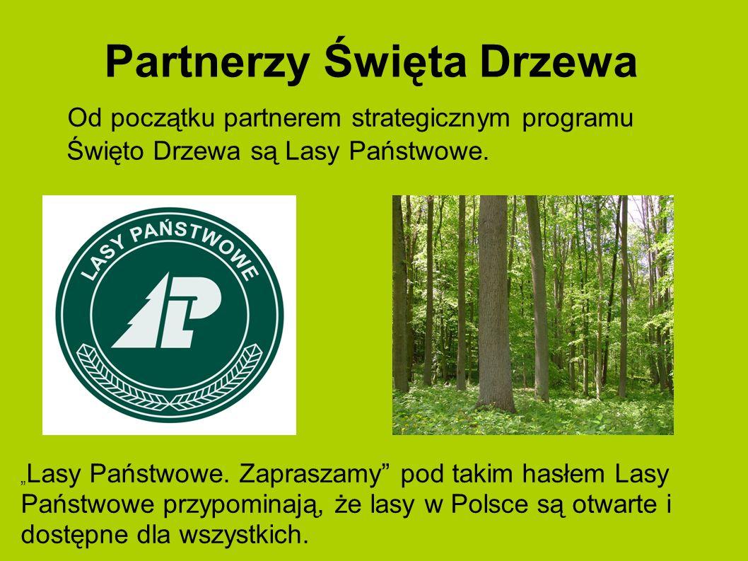 Partnerzy Święta Drzewa