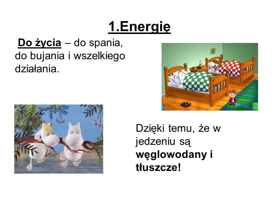 1.Energię Do życia – do spania, do bujania i wszelkiego działania.
