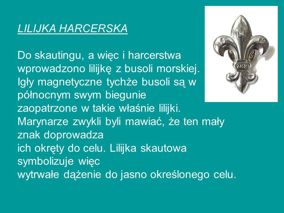 LILIJKA HARCERSKA