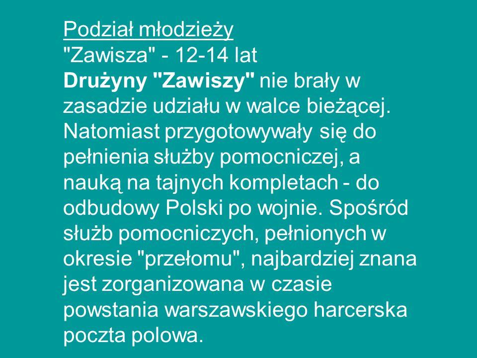 Podział młodzieży Zawisza - 12-14 lat.