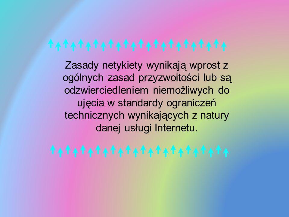 Zasady netykiety wynikają wprost z ogólnych zasad przyzwoitości lub są odzwierciedleniem niemożliwych do ujęcia w standardy ograniczeń technicznych wynikających z natury danej usługi Internetu.