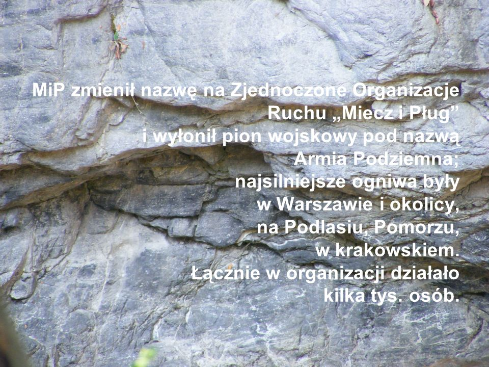 """MiP zmienił nazwę na Zjednoczone Organizacje Ruchu """"Miecz i Pług i wyłonił pion wojskowy pod nazwą Armia Podziemna; najsilniejsze ogniwa były w Warszawie i okolicy, na Podlasiu, Pomorzu, w krakowskiem."""