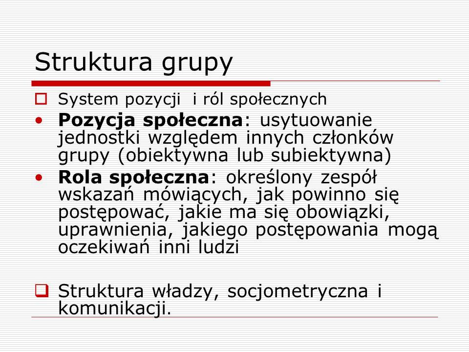 Struktura grupy System pozycji i ról społecznych.