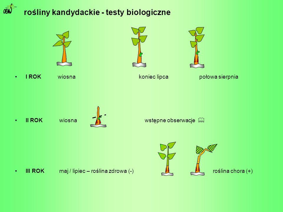 S OEM rośliny kandydackie - testy biologiczne
