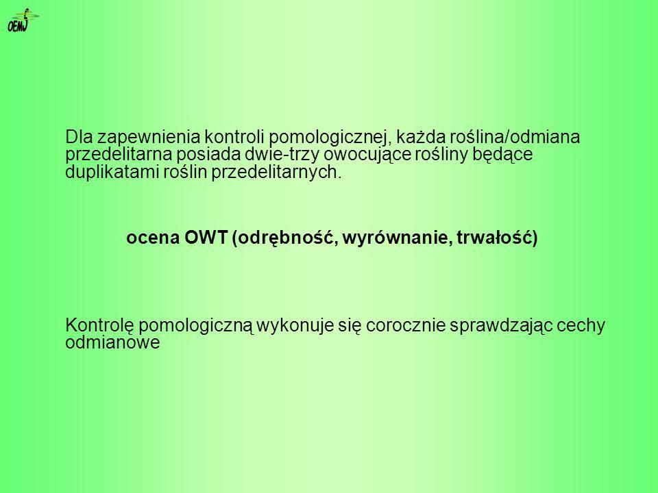 ocena OWT (odrębność, wyrównanie, trwałość)