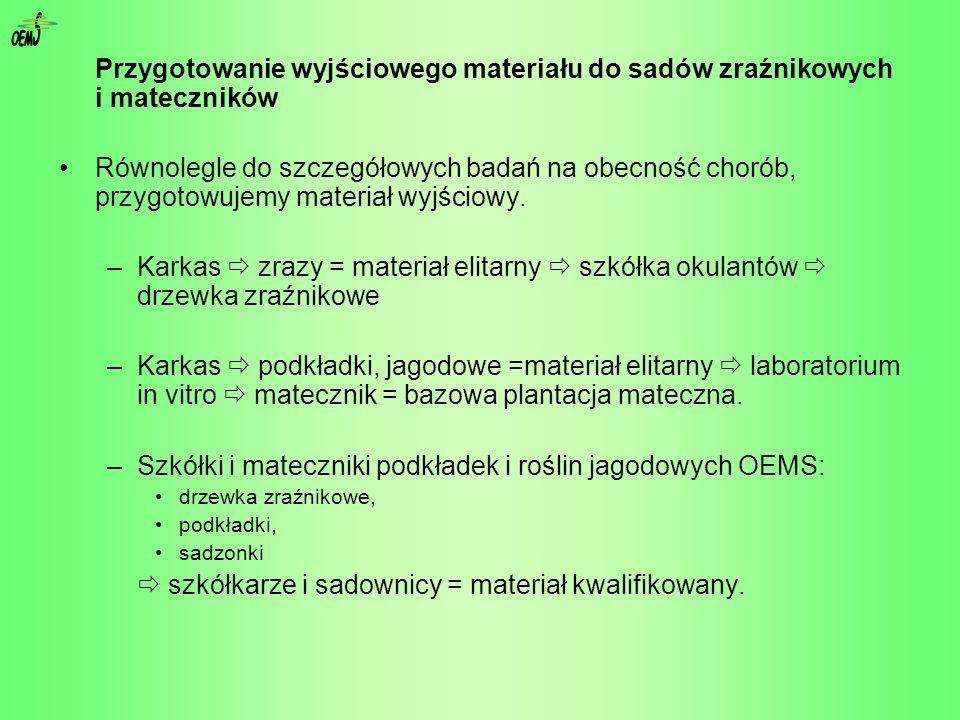 OEM S. Przygotowanie wyjściowego materiału do sadów zraźnikowych i mateczników.