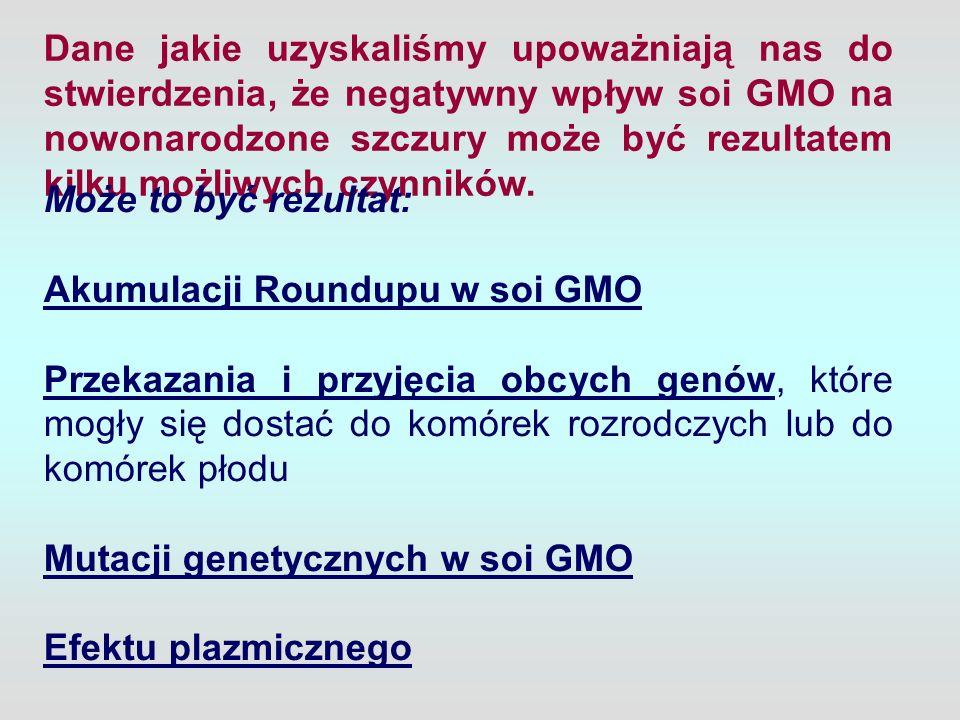Dane jakie uzyskaliśmy upoważniają nas do stwierdzenia, że negatywny wpływ soi GMO na nowonarodzone szczury może być rezultatem kilku możliwych czynników.