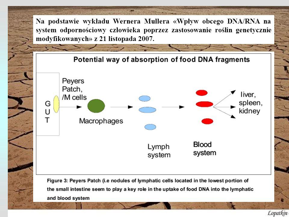 Na podstawie wykładu Wernera Mullera «Wpływ obcego DNA/RNA na system odpornościowy człowieka poprzez zastosowanie roślin genetycznie modyfikowanych» z 21 listopada 2007.