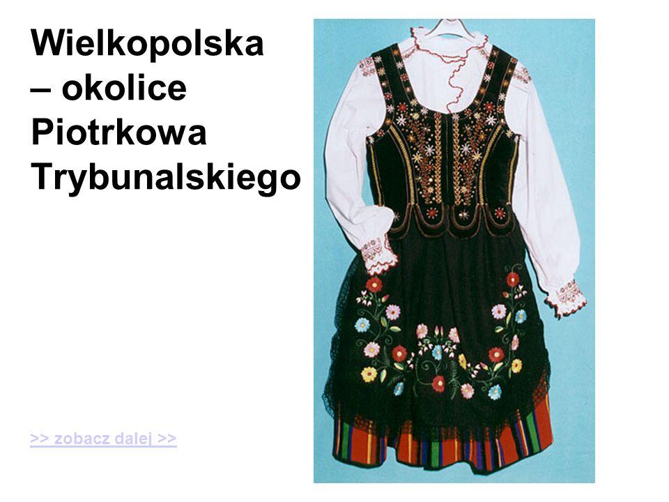 Wielkopolska – okolice Piotrkowa Trybunalskiego
