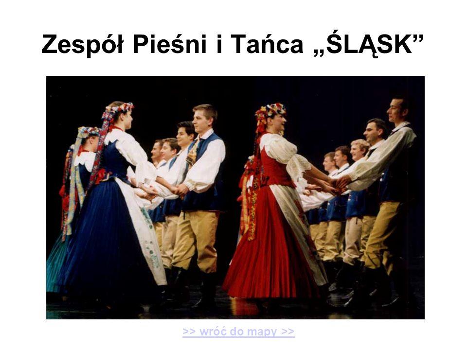 """Zespół Pieśni i Tańca """"ŚLĄSK"""