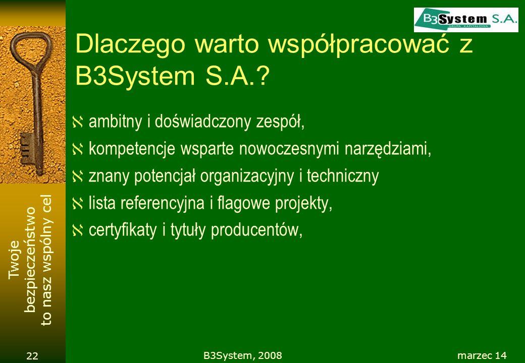 Dlaczego warto współpracować z B3System S.A.
