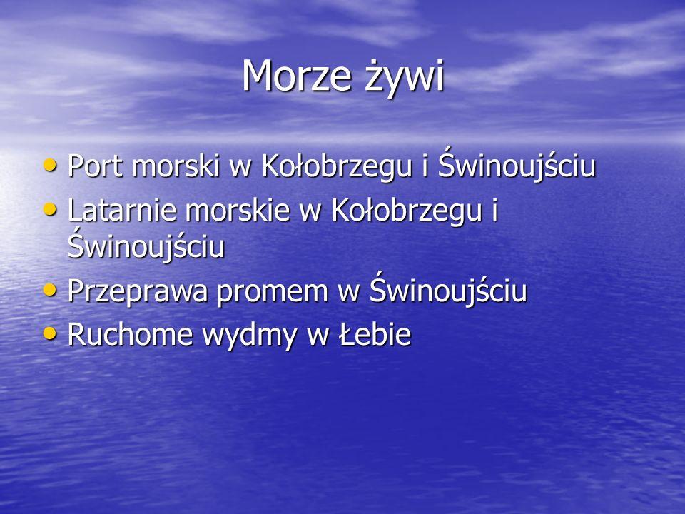 Morze żywi Port morski w Kołobrzegu i Świnoujściu